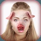 Animal Face Photo Montage app