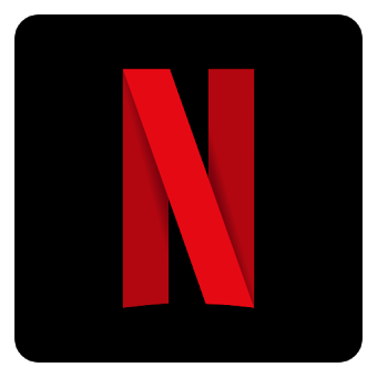 Netflix for pc icon