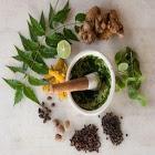 Ayurveda Medicine List icon